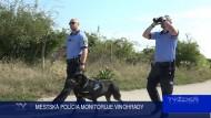 MESTSKÁ POLÍCIA MONITORUJE VINOHRADY